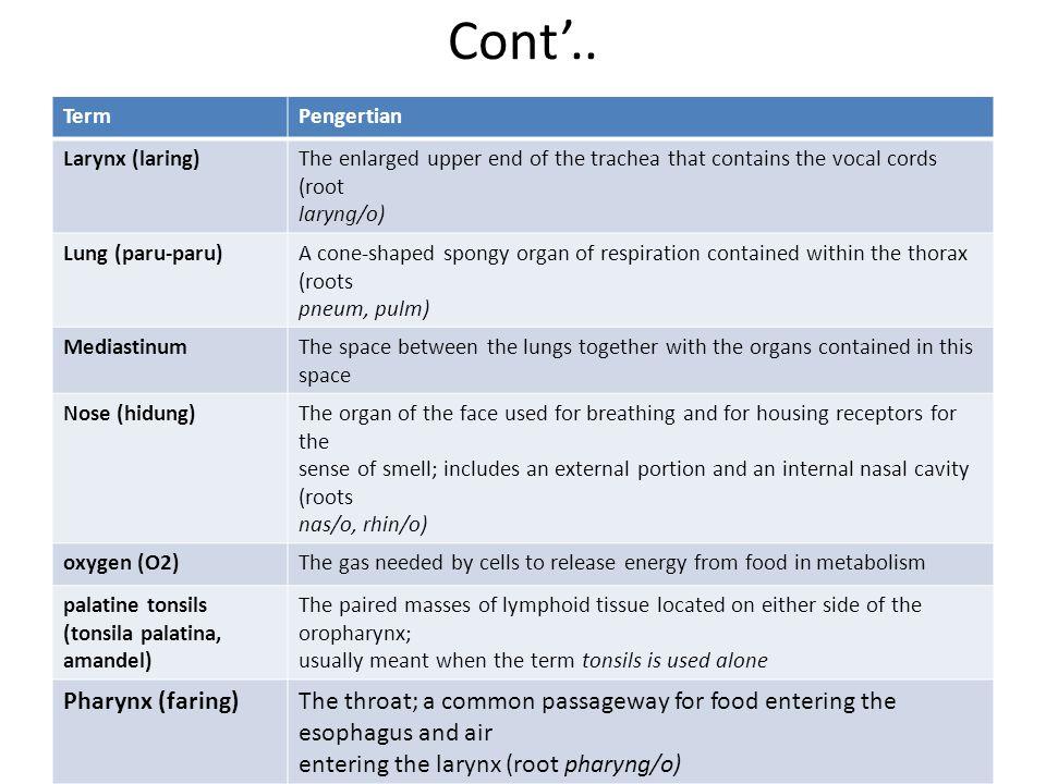 Cont'.. Pharynx (faring)