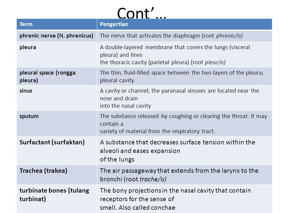 Cont'… Surfactant (surfaktan)