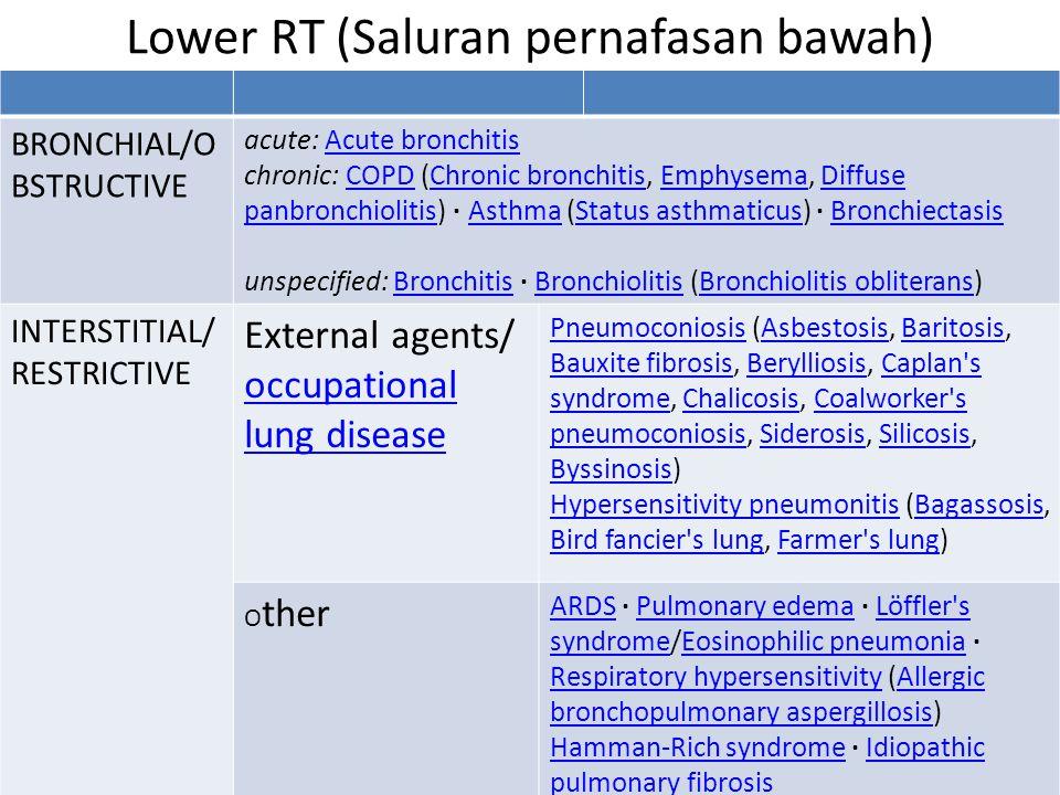 Lower RT (Saluran pernafasan bawah)