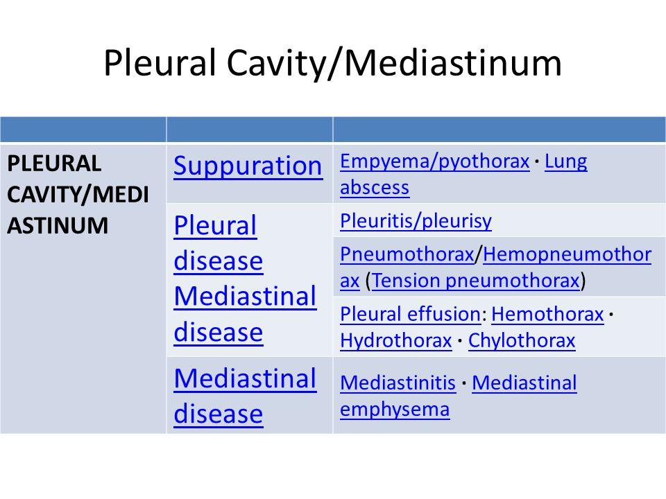 Pleural Cavity/Mediastinum