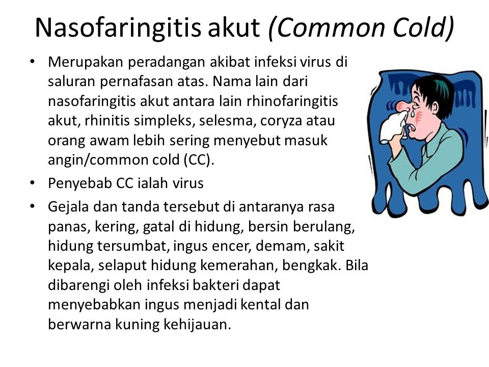 Nasofaringitis akut (Common Cold)