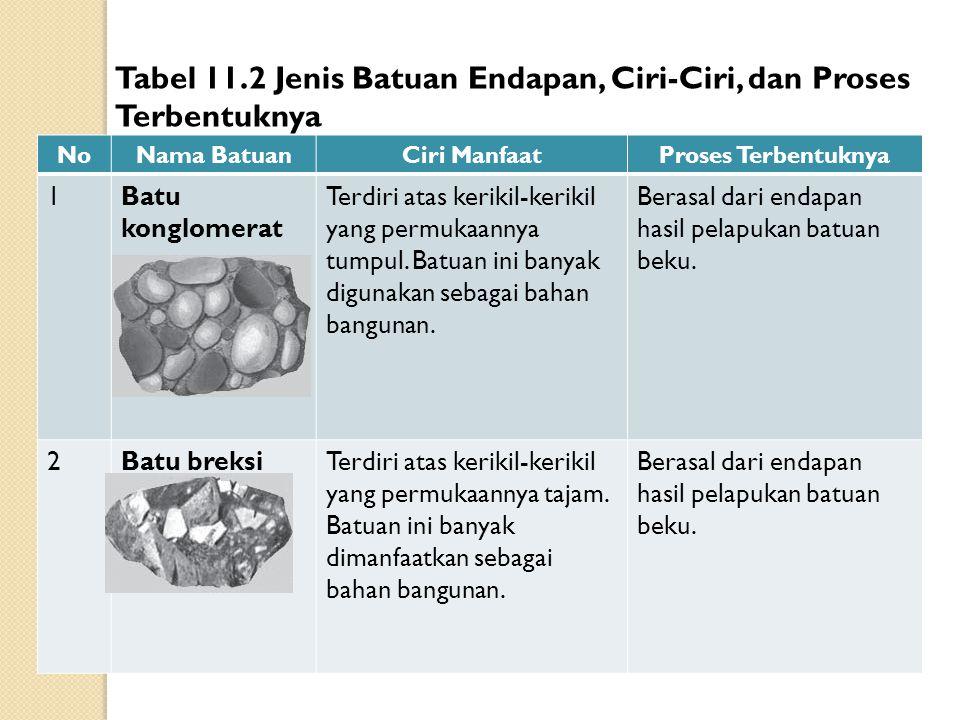 Tabel 11.2 Jenis Batuan Endapan, Ciri-Ciri, dan Proses Terbentuknya