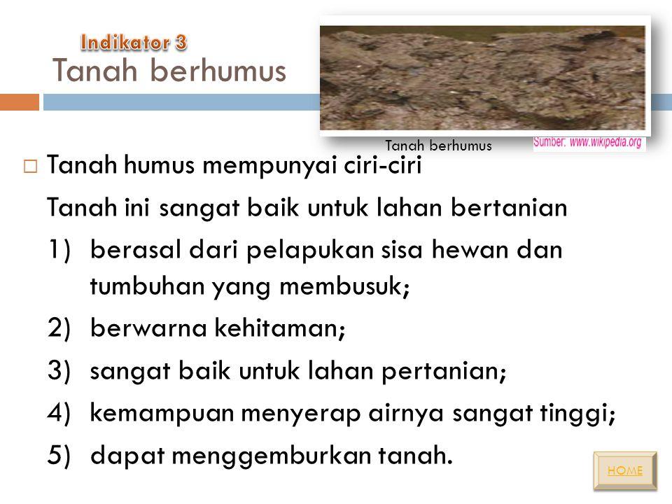 Tanah berhumus Tanah humus mempunyai ciri-ciri