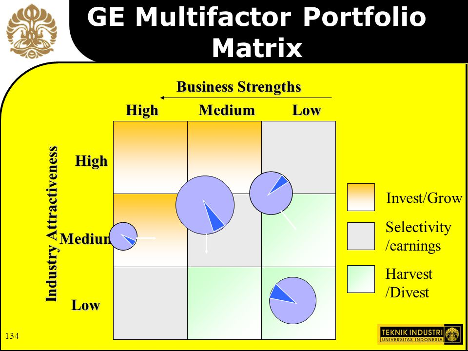 GE Multifactor Portfolio Matrix