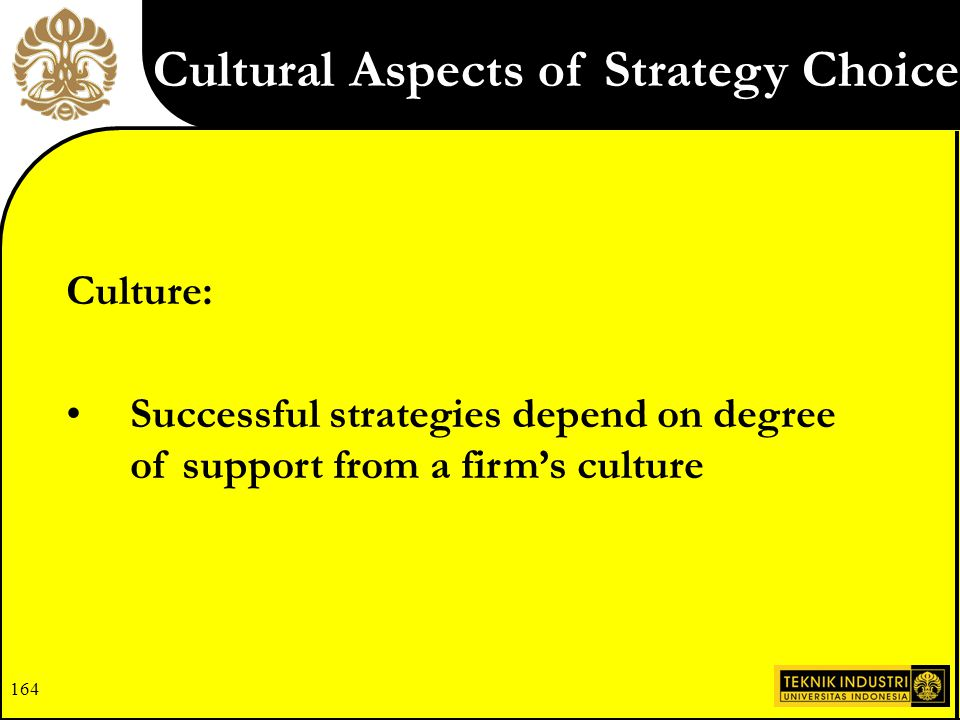 Cultural Aspects of Strategy Choice