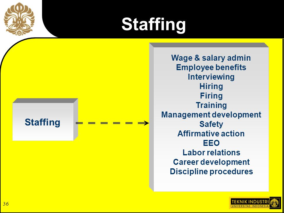 Management development Discipline procedures