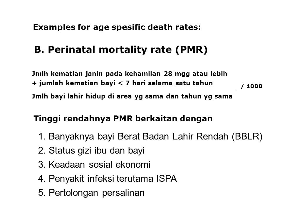 B. Perinatal mortality rate (PMR)