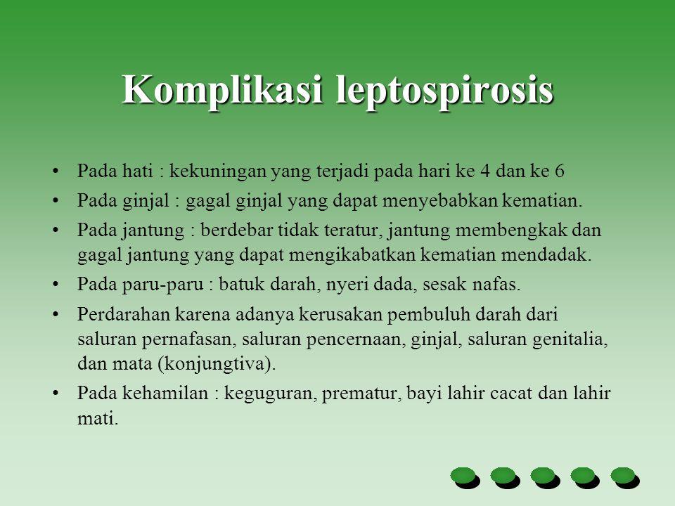 Komplikasi leptospirosis