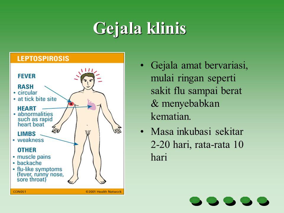 Gejala klinis Gejala amat bervariasi, mulai ringan seperti sakit flu sampai berat & menyebabkan kematian.