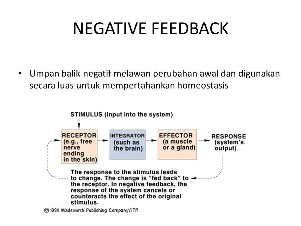 NEGATIVE FEEDBACK Umpan balik negatif melawan perubahan awal dan digunakan secara luas untuk mempertahankan homeostasis.