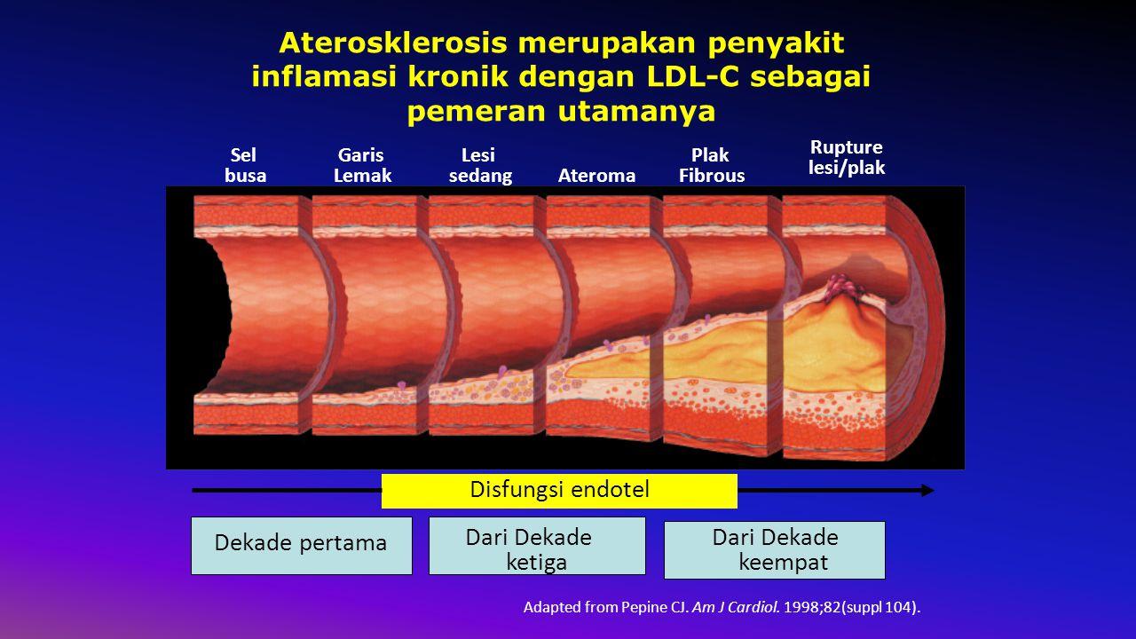 Adapted from Pepine CJ. Am J Cardiol. 1998;82(suppl 104).