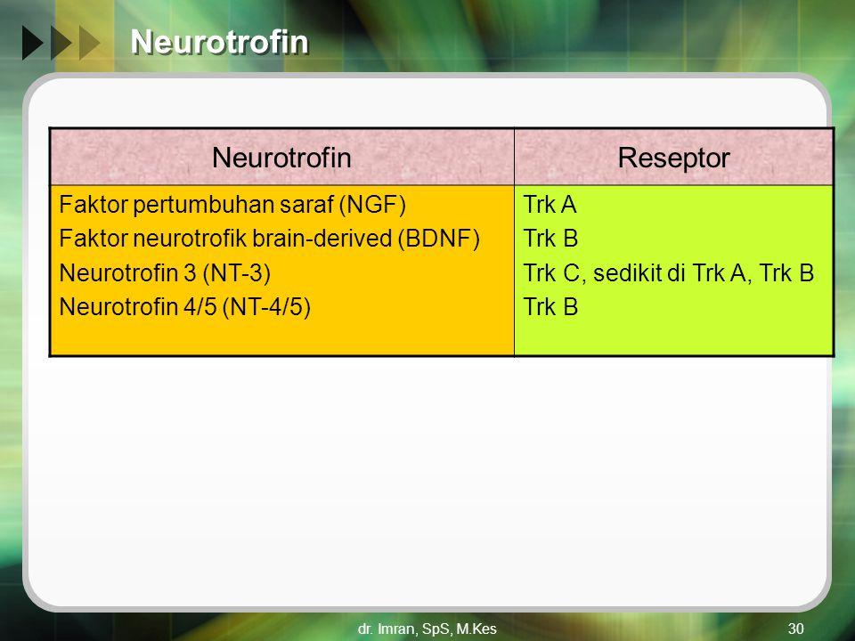 Neurotrofin Neurotrofin Reseptor Faktor pertumbuhan saraf (NGF)