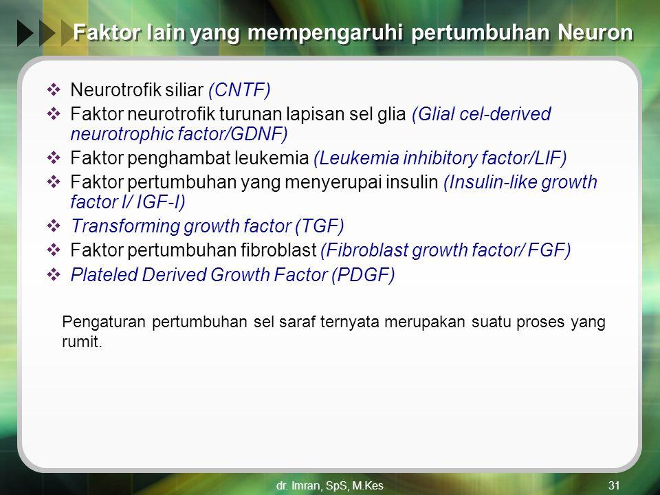 Faktor lain yang mempengaruhi pertumbuhan Neuron