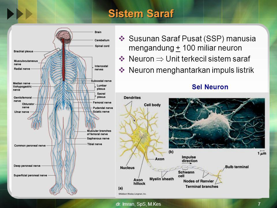 Sistem Saraf Susunan Saraf Pusat (SSP) manusia mengandung + 100 miliar neuron. Neuron  Unit terkecil sistem saraf.