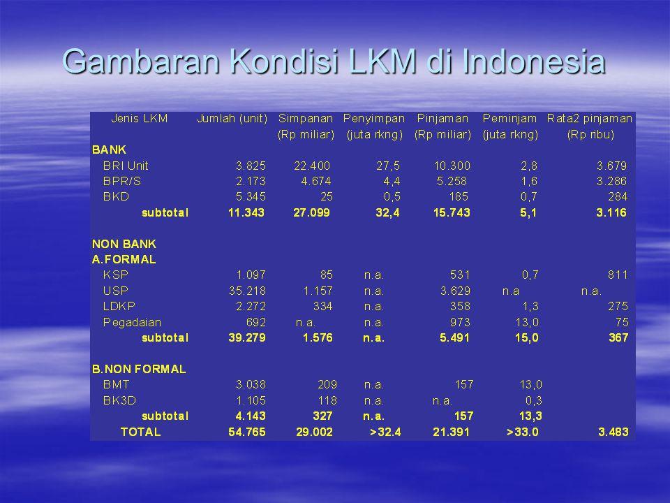 Gambaran Kondisi LKM di Indonesia