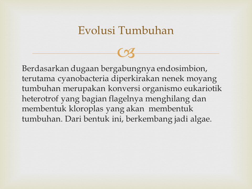 Evolusi Tumbuhan
