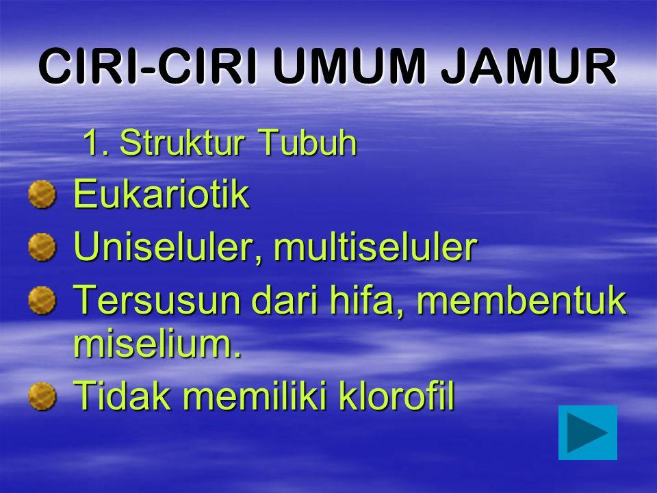 CIRI-CIRI UMUM JAMUR Eukariotik Uniseluler, multiseluler