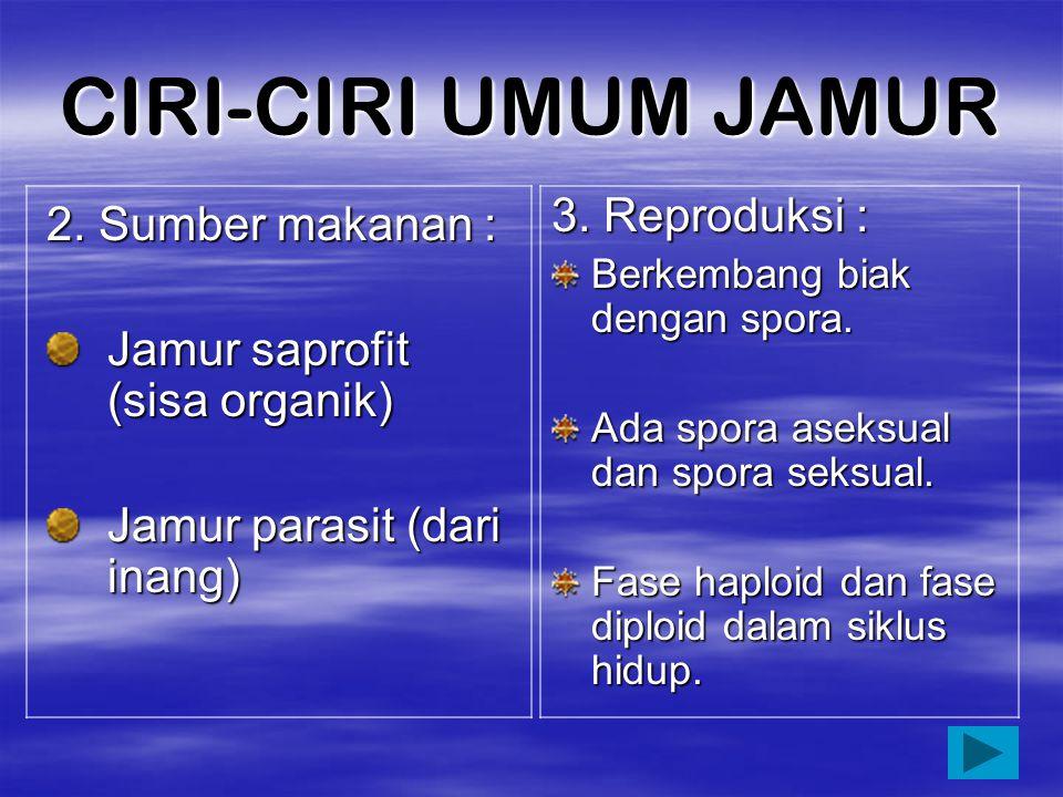 CIRI-CIRI UMUM JAMUR 3. Reproduksi : 2. Sumber makanan :