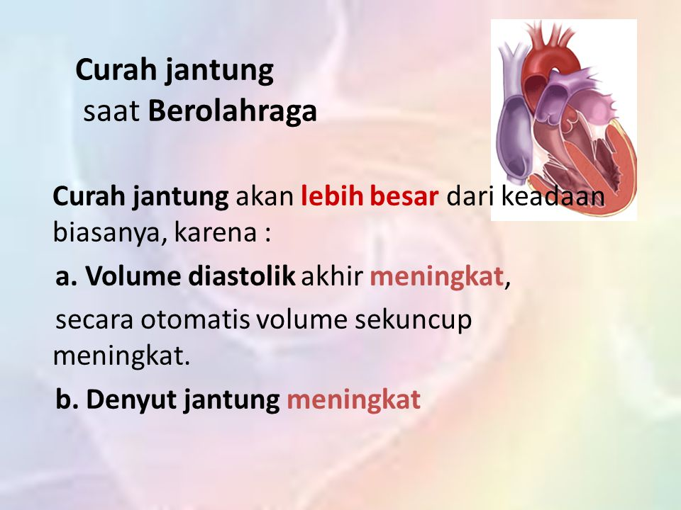 Curah jantung saat Berolahraga