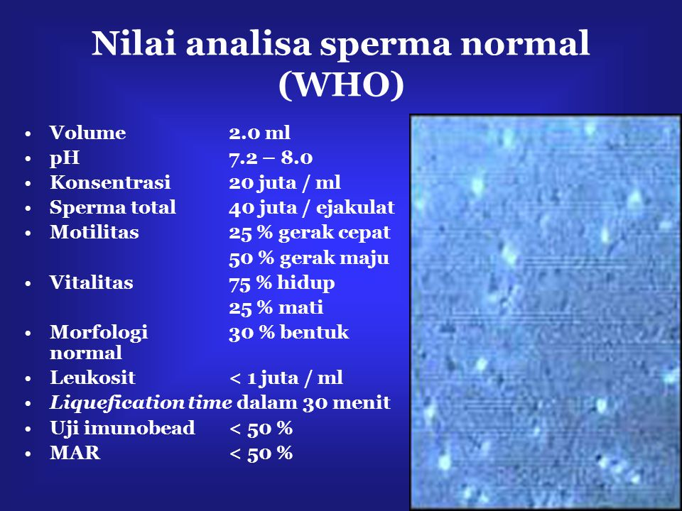 Nilai analisa sperma normal (WHO)
