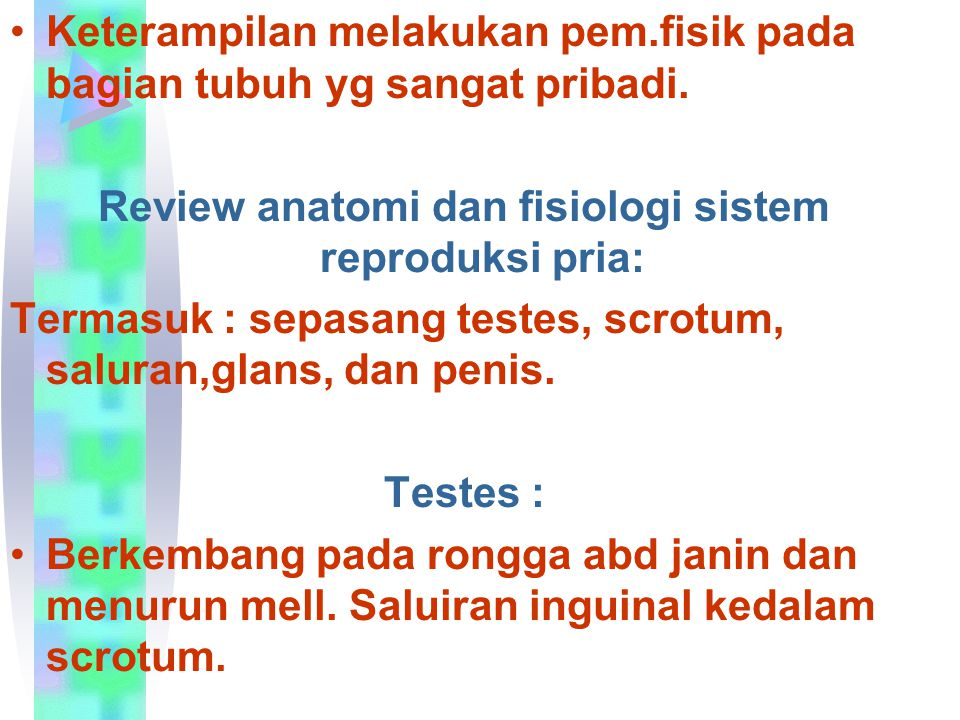 Review anatomi dan fisiologi sistem reproduksi pria: