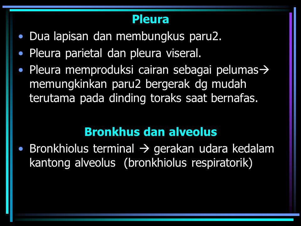 Pleura Dua lapisan dan membungkus paru2. Pleura parietal dan pleura viseral.