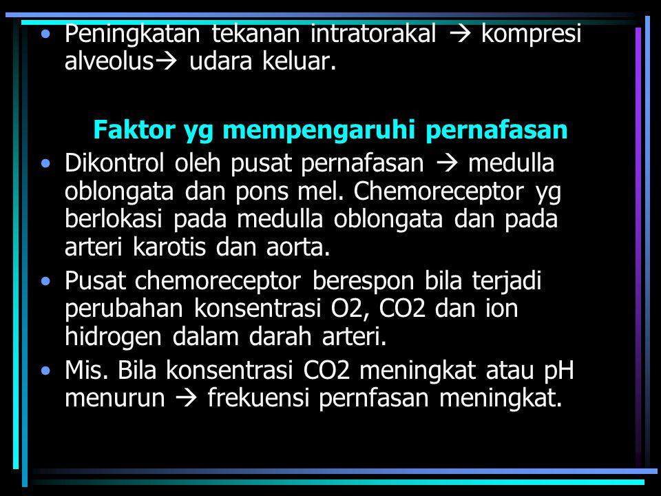 Faktor yg mempengaruhi pernafasan