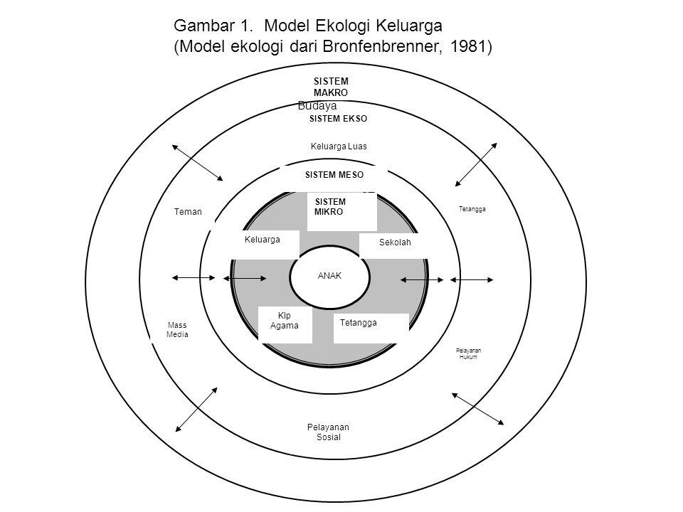 Gambar 1. Model Ekologi Keluarga