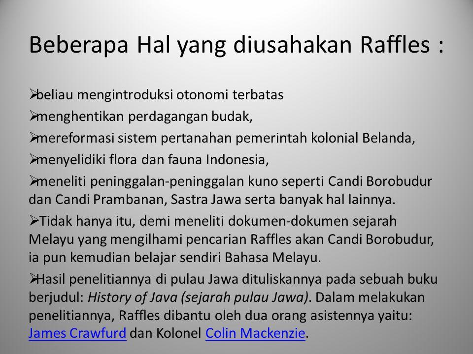 Beberapa Hal yang diusahakan Raffles :