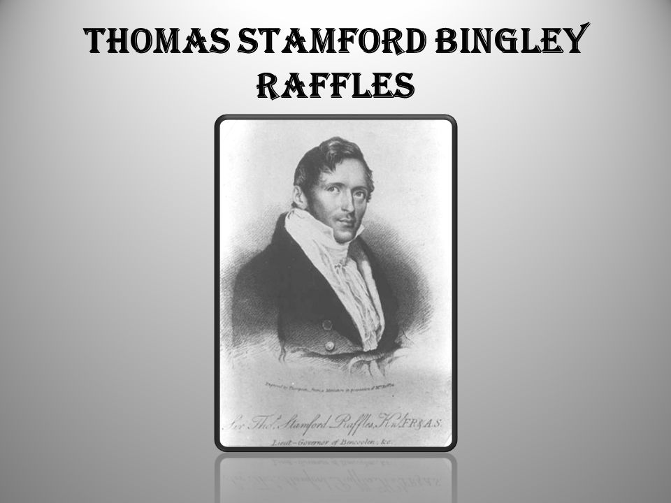 Thomas Stamford Bingley Raffles