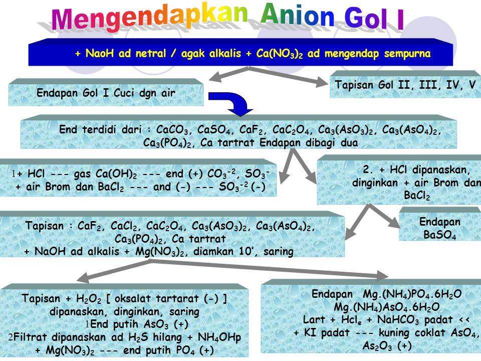 Mengendapkan Anion Gol I