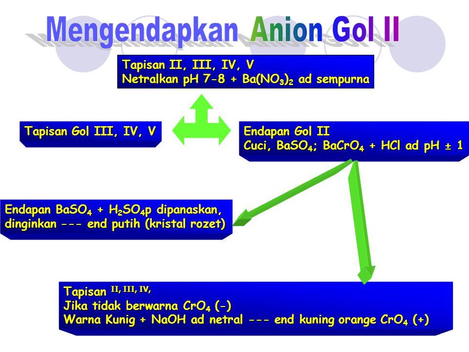 Mengendapkan Anion Gol II