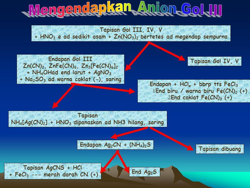 Mengendapkan Anion Gol III