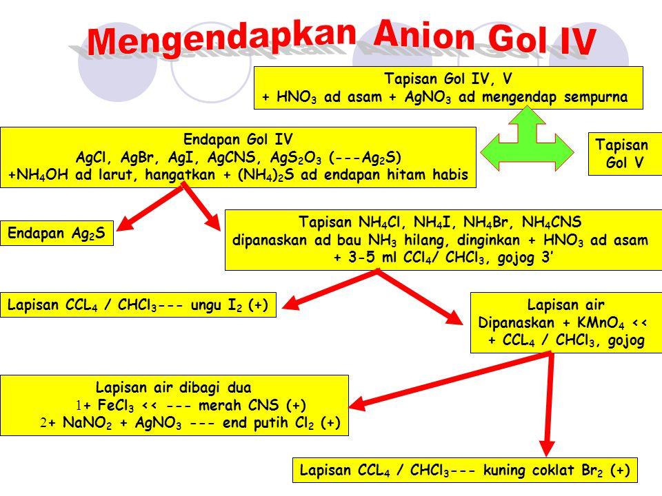 Mengendapkan Anion Gol IV