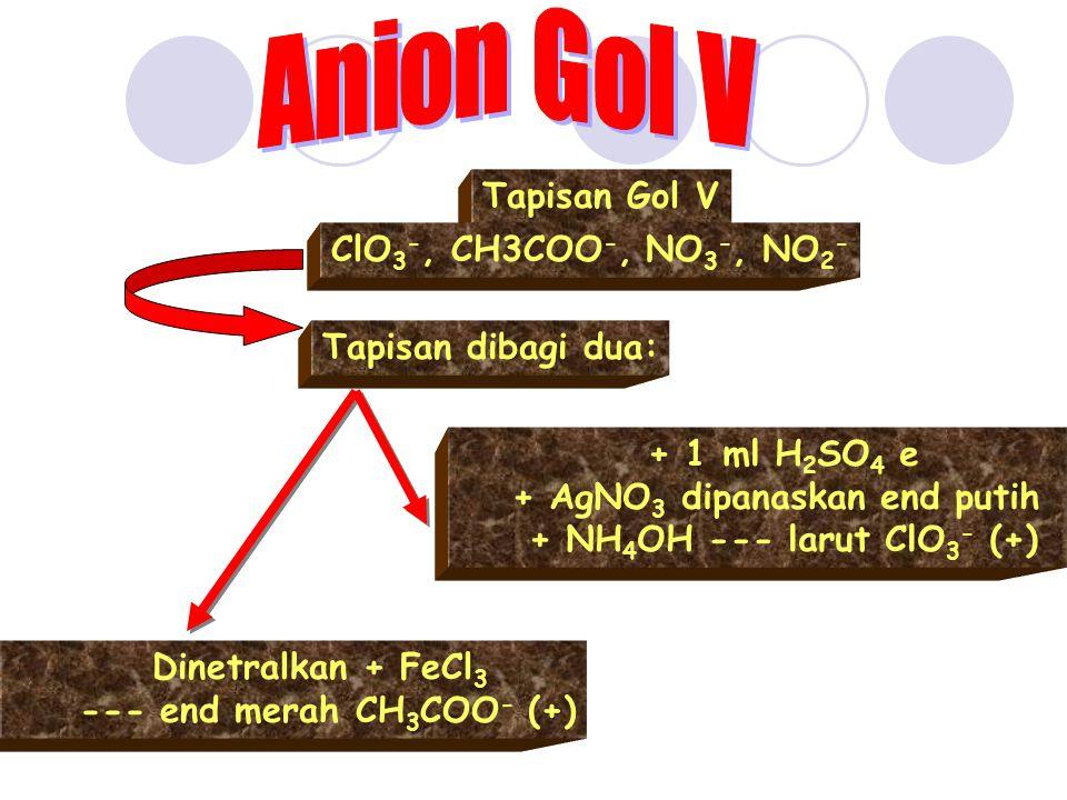 Anion Gol V Tapisan Gol V ClO3-, CH3COO-, NO3-, NO2-