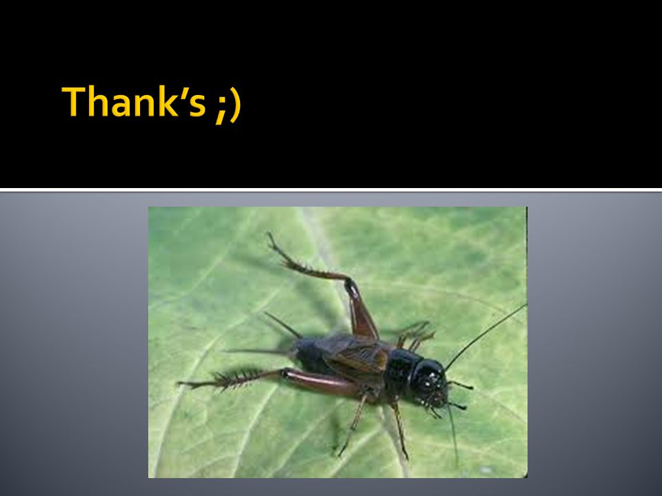Thank's ;)