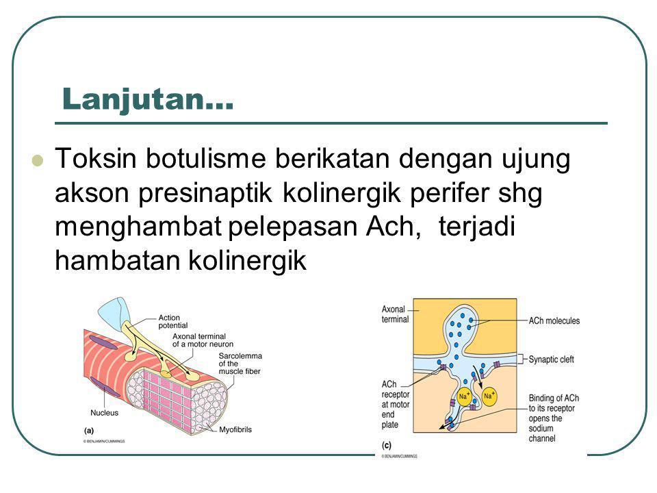 Lanjutan… Toksin botulisme berikatan dengan ujung akson presinaptik kolinergik perifer shg menghambat pelepasan Ach, terjadi hambatan kolinergik.