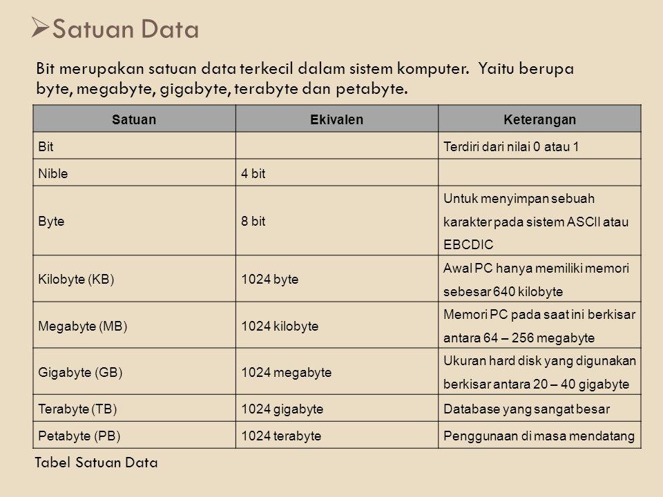 Satuan Data Bit merupakan satuan data terkecil dalam sistem komputer. Yaitu berupa byte, megabyte, gigabyte, terabyte dan petabyte.