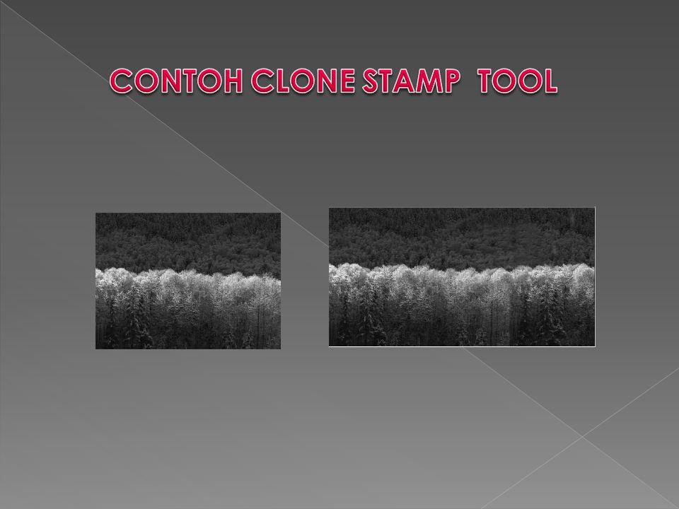 CONTOH CLONE STAMP TOOL