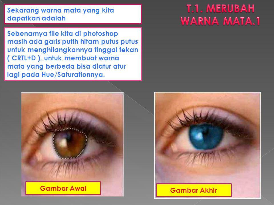 T.1. MERUBAH WARNA MATA.1 Sekarang warna mata yang kita dapatkan adalah.
