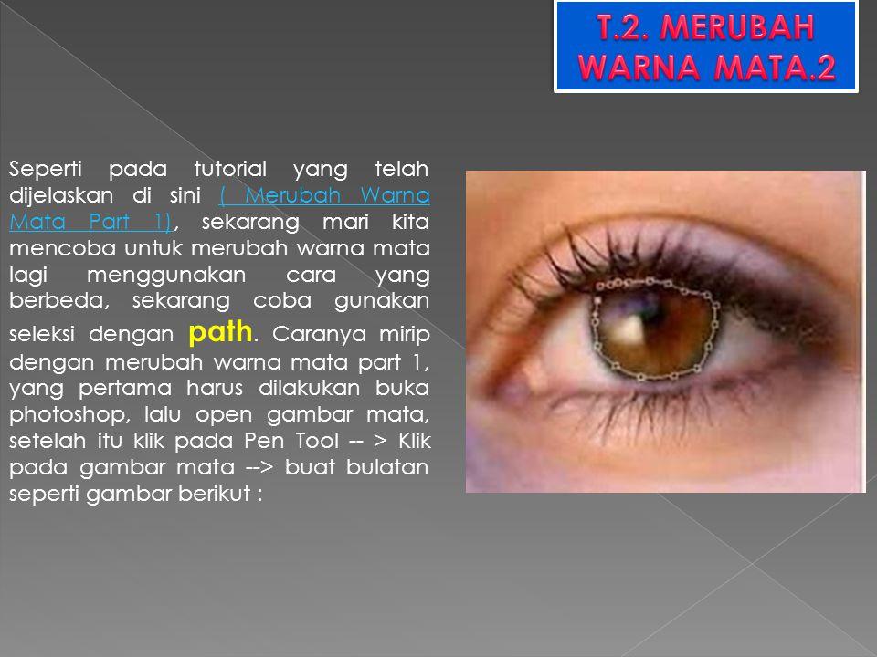 T.2. MERUBAH WARNA MATA.2