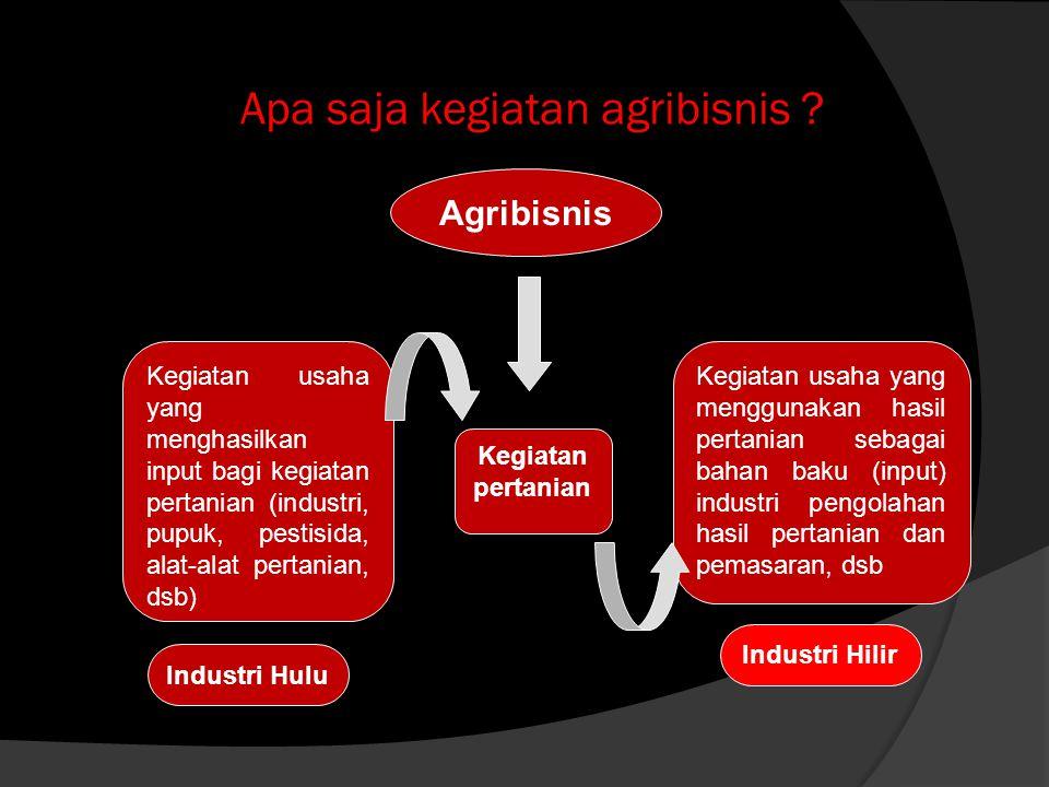 Apa saja kegiatan agribisnis