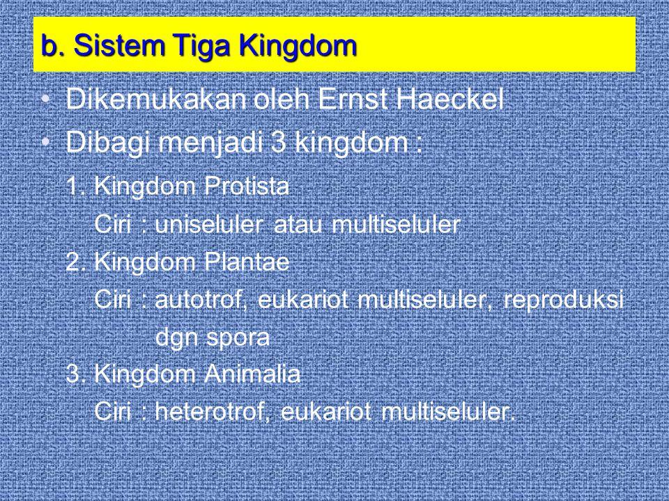 Dikemukakan oleh Ernst Haeckel Dibagi menjadi 3 kingdom :