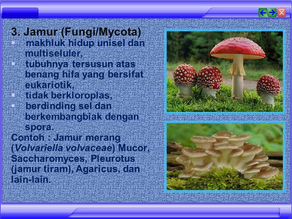 3. Jamur (Fungi/Mycota) makhluk hidup unisel dan multiseluler,