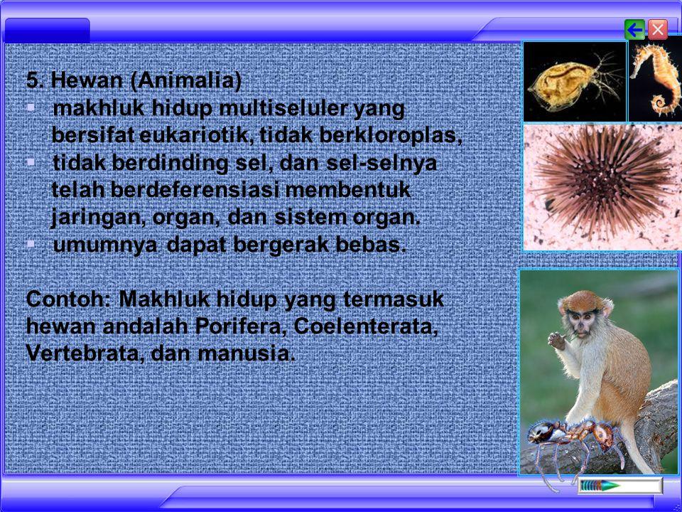 5. Hewan (Animalia) makhluk hidup multiseluler yang bersifat eukariotik, tidak berkloroplas,