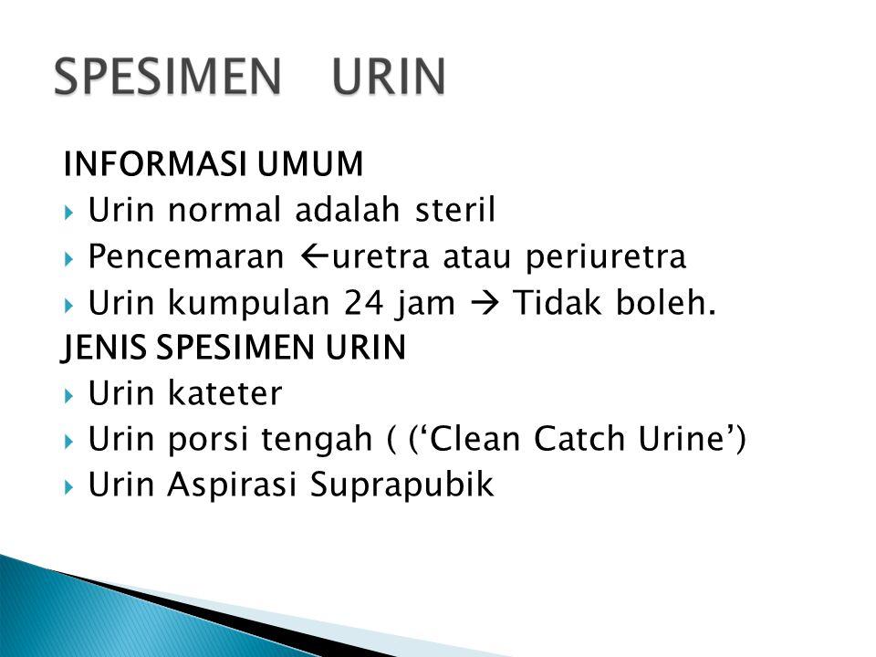 INFORMASI UMUM Urin normal adalah steril. Pencemaran uretra atau periuretra. Urin kumpulan 24 jam  Tidak boleh.