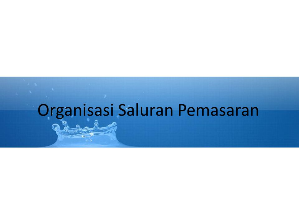 Organisasi Saluran Pemasaran