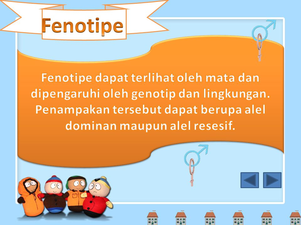 Fenotipe