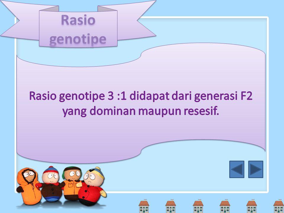 Rasio genotipe Rasio genotipe 3 :1 didapat dari generasi F2 yang dominan maupun resesif.