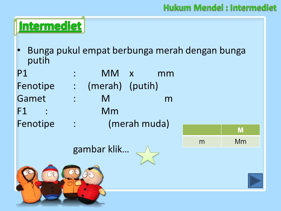Hukum Mendel : Intermediet